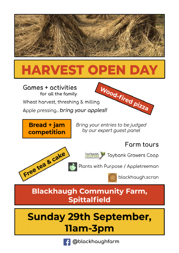 Blackhaugh Community Farm Harvest Open Day & 'The Wheat We Eat'